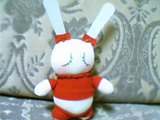 小兔兔(糖果袜)