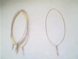 2.将铁圈拉成细长形