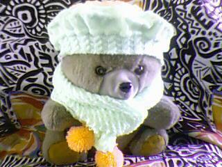 拿小熊当模特吧