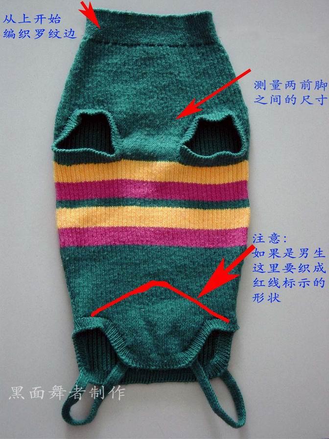 小狗毛衣.jpg
