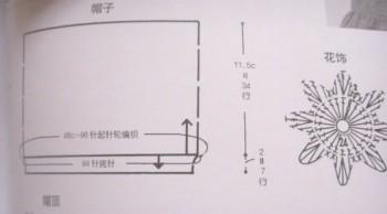 SSL10730.JPG