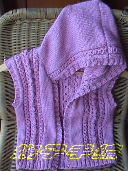浅紫色连帽背心