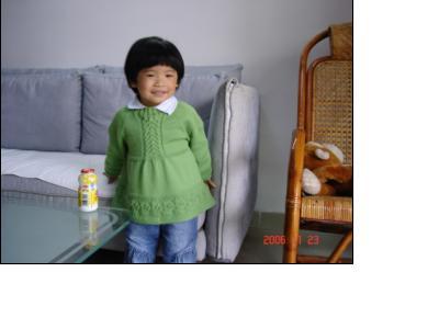 绿色毛衣4.JPG