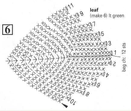 这个就是叶子的图解我看不懂