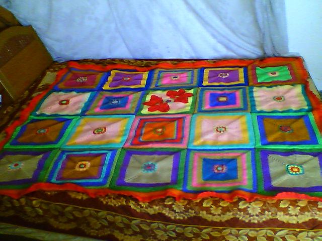 花了一个多月完成的毛毯.(加了两只蝴蝶)