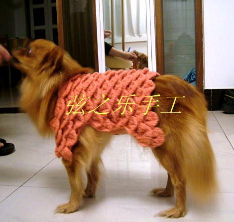 狗狗衣3.jpg