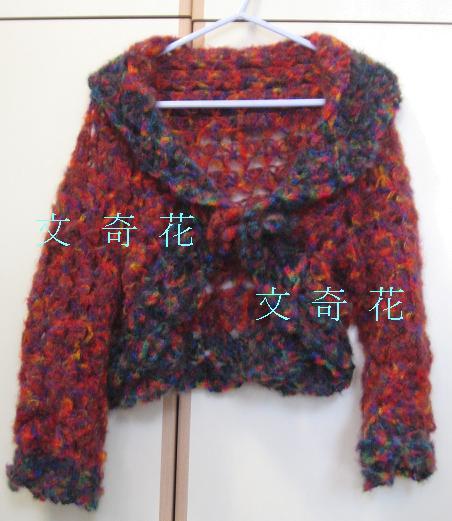 風車衣02.JPG