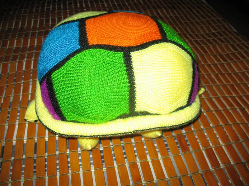 乌龟的侧面