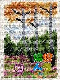 枫树.JPG