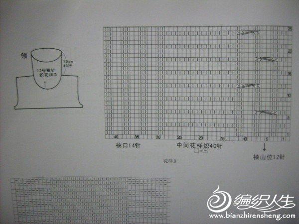 S6304188.JPG