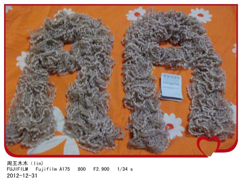 5000编织币成就的围巾 006_副本.jpg