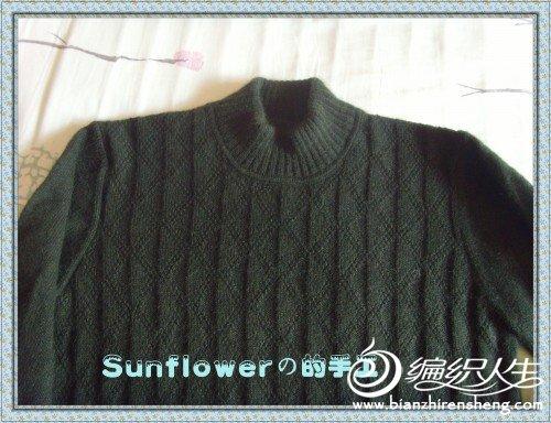 墨绿色的毛衣.jpg