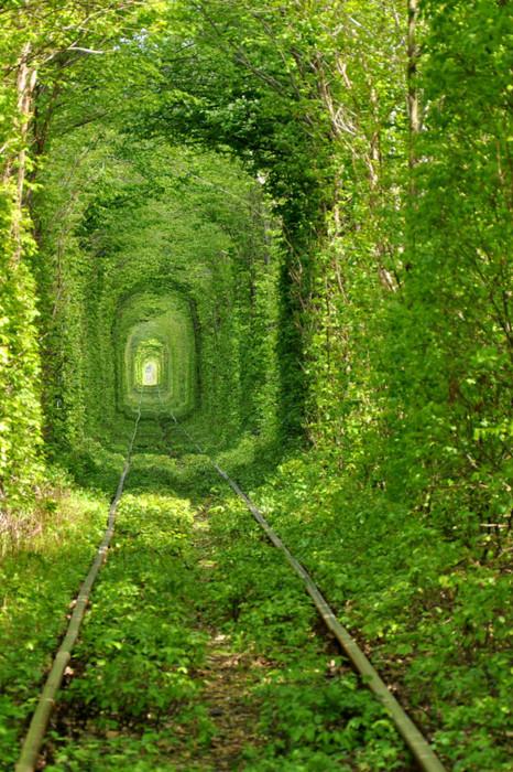 乌克兰某个火车隧道