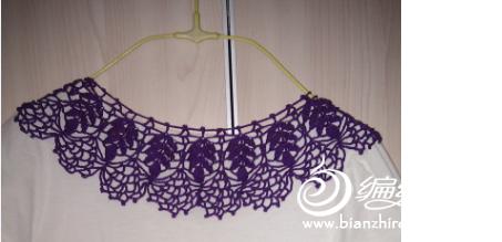 紫色领.jpg