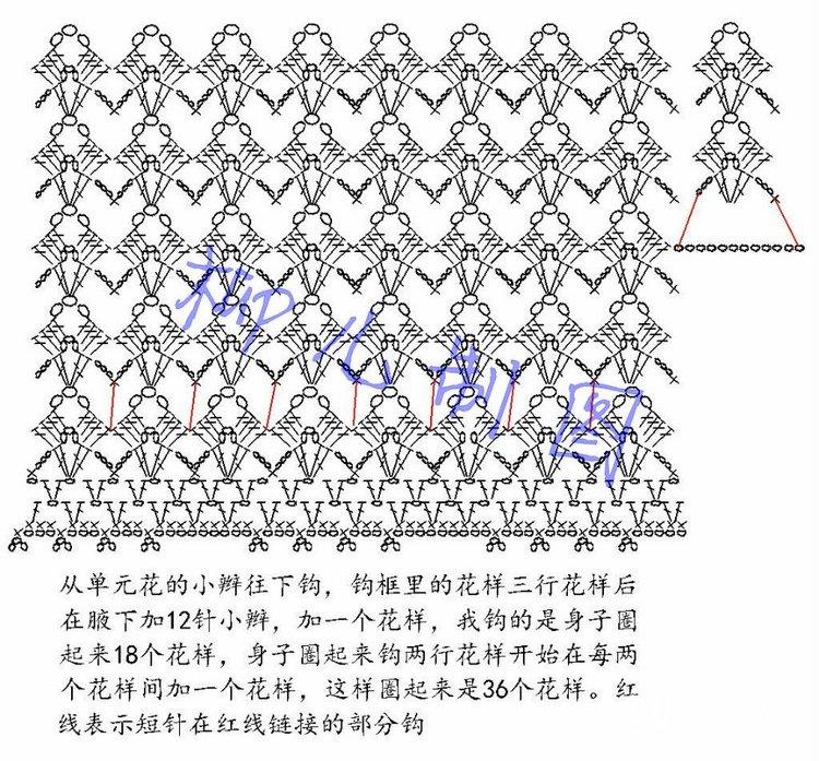 柳儿 (1).jpg