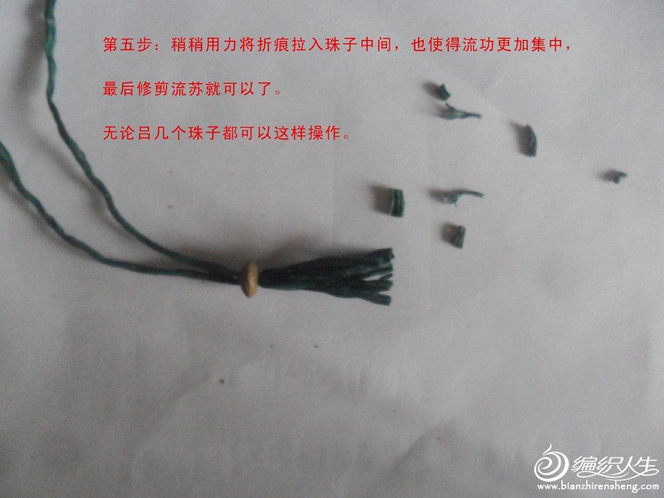 SAM_4104.jpg