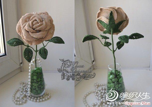 玫瑰 (11).jpg