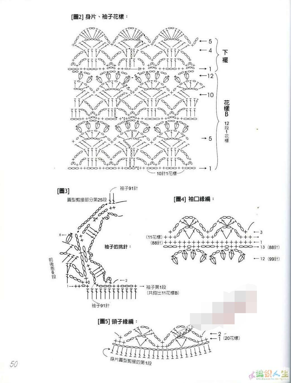 葱图解2.jpg