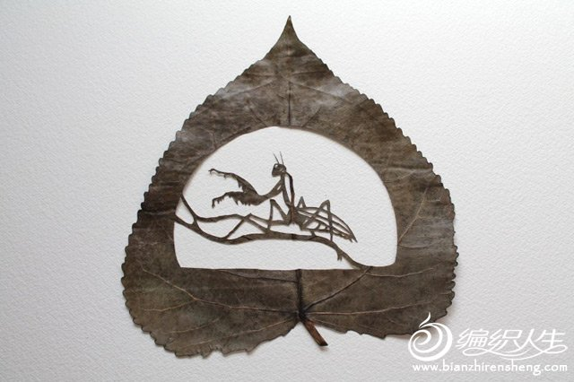 extraordinary-leaf-artwork-by-lorenzo-duran-41.jpg