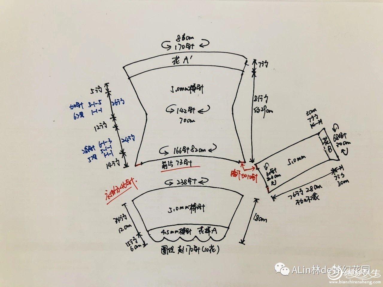 仙瓣 (1).jpg