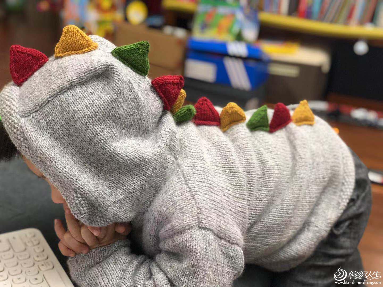 恐龙儿童棒针毛衣