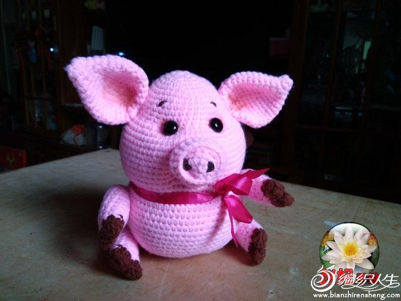 大胖猪1.jpg