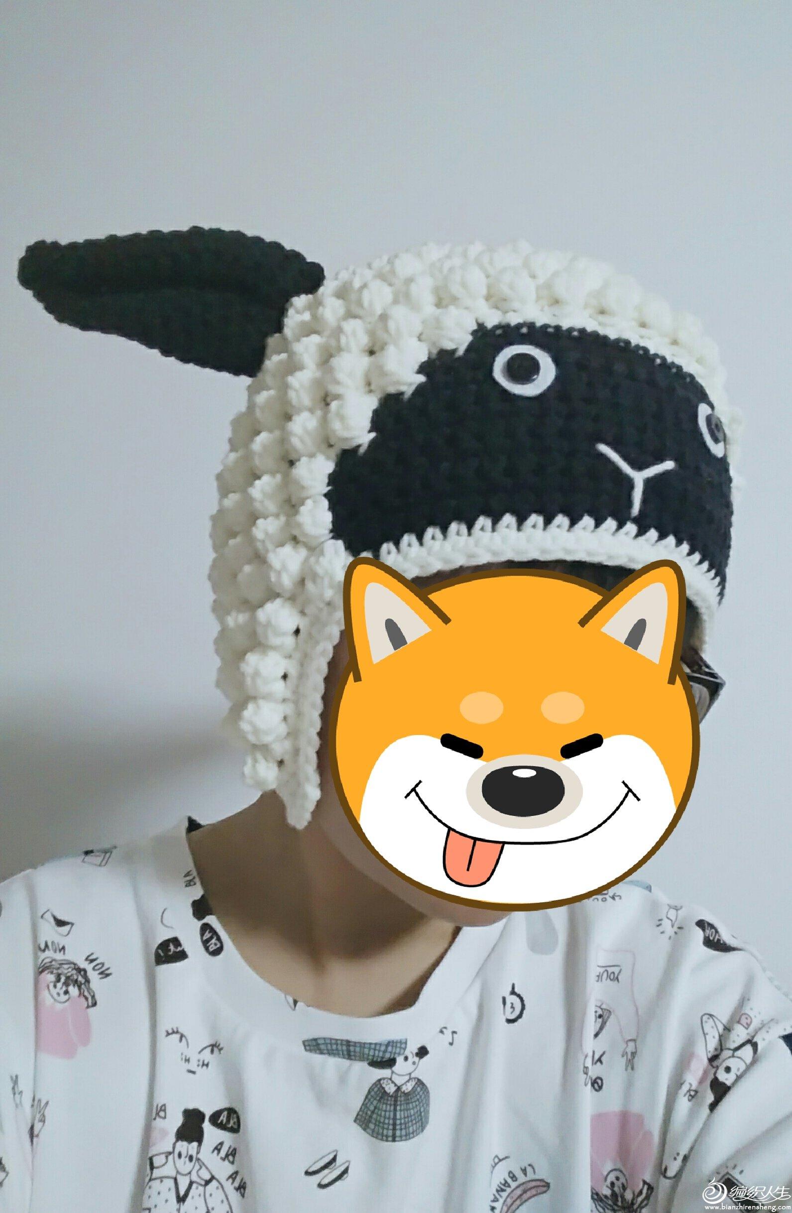 1902绵羊帽
