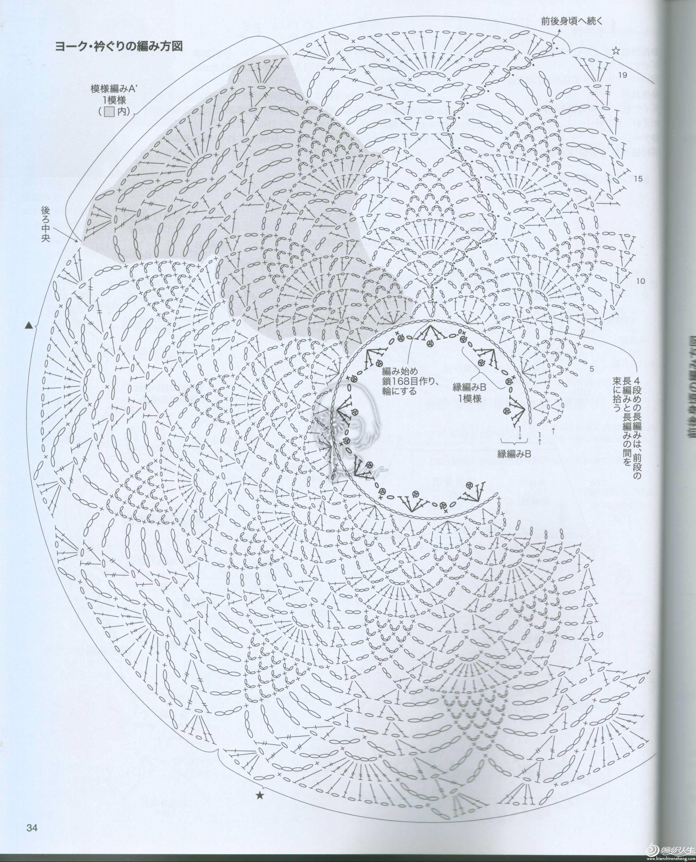 紫丁香图解04.jpg