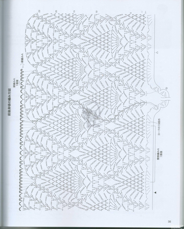 紫丁香图解05.jpg