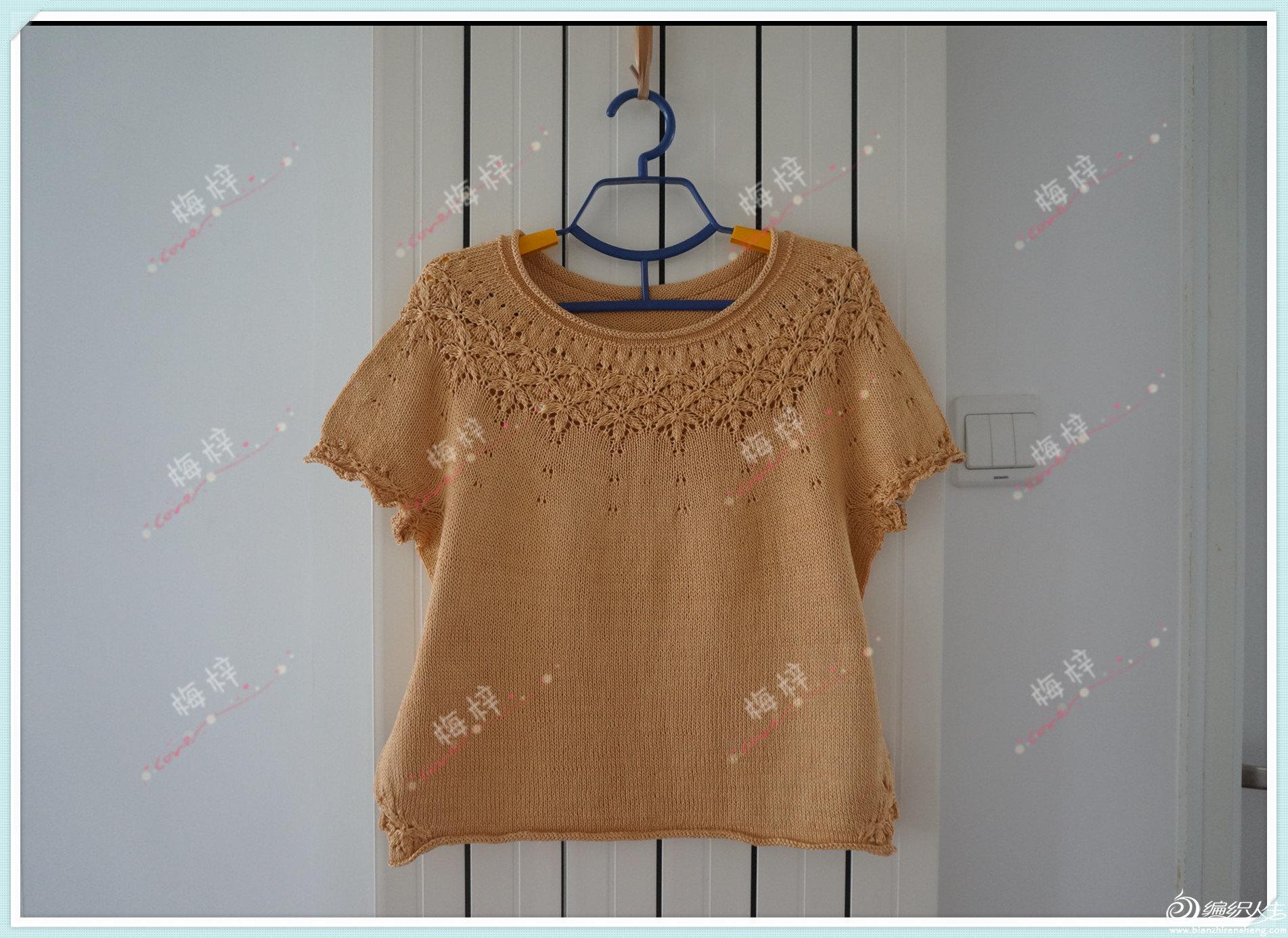 棒针蕾丝镂空花领口短袖衫