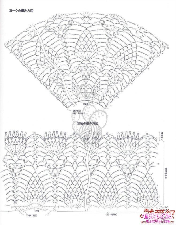 菠萝花3.jpg