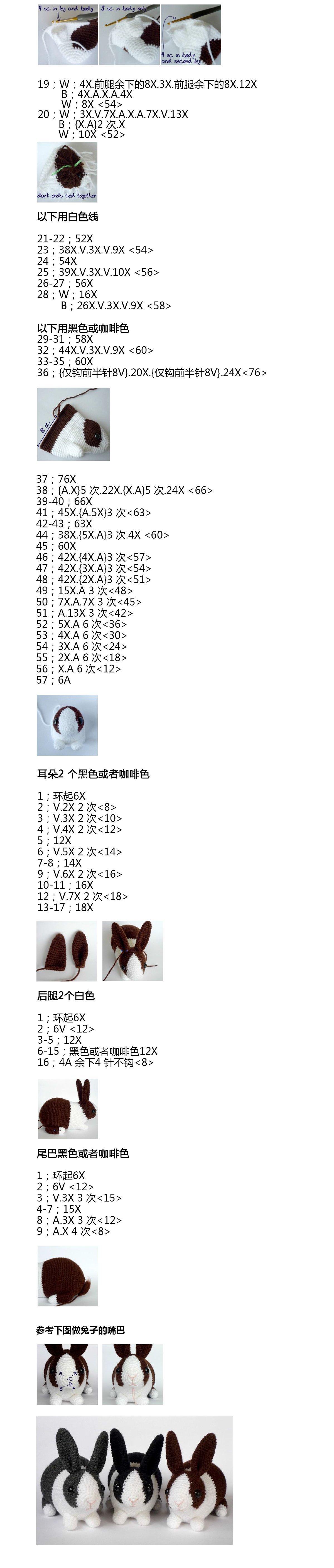 兔子图解2.jpg