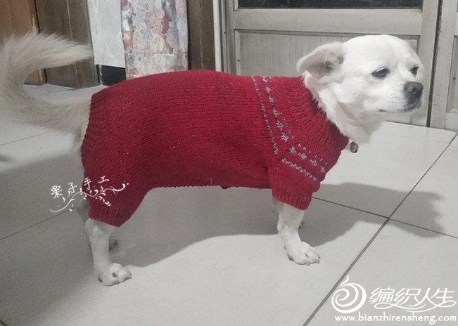 棒针狗狗毛衣