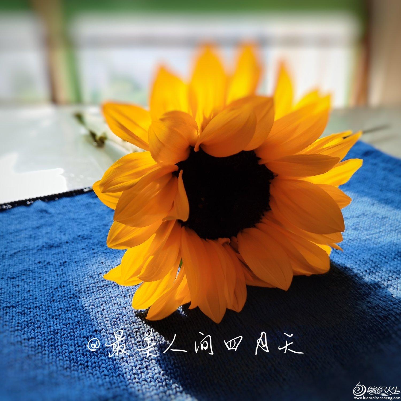 微信图片_20200422143237.jpg