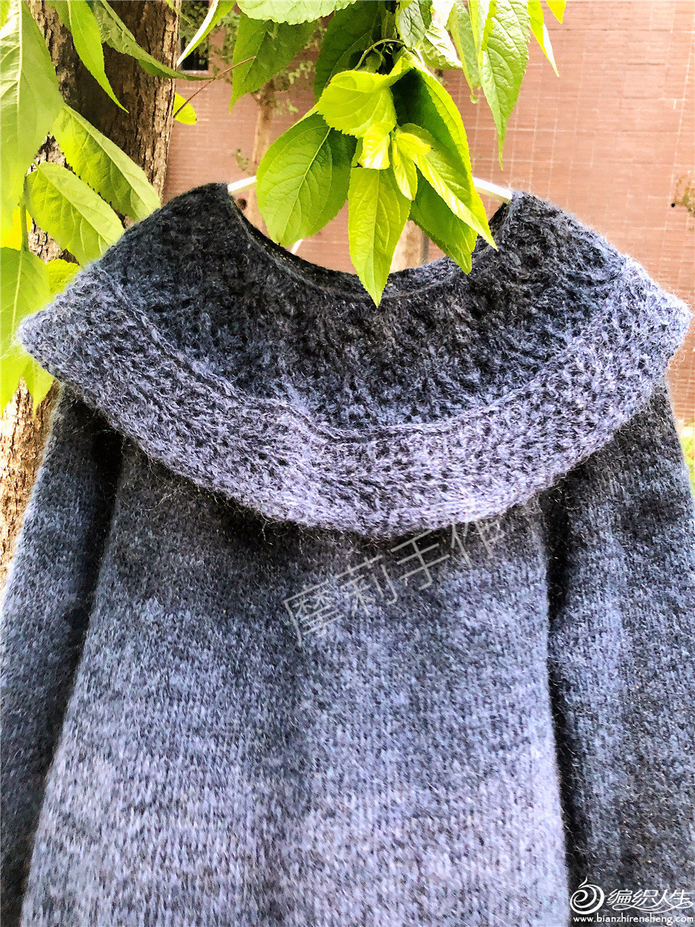 圆领蕾丝领女士棒针段染毛衣