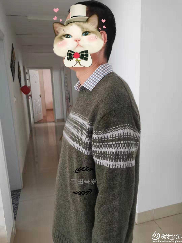 男士棒针提花毛衣