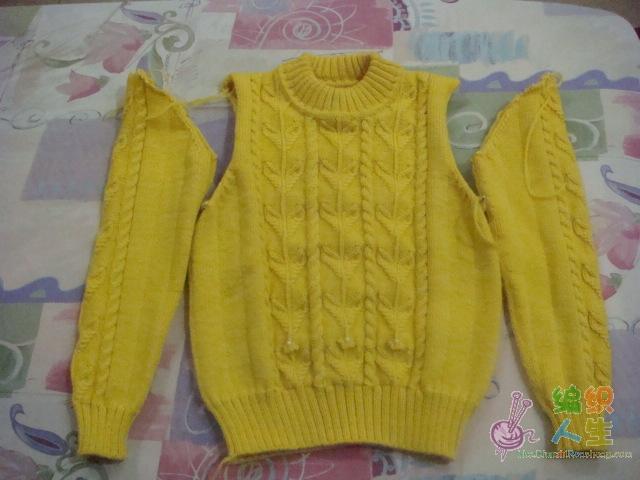 黄毛衣-1.JPG